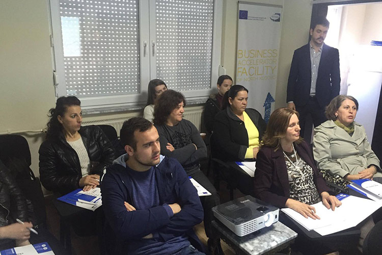 Community Building Mitrovica and NGO ''D&G Solutions'' organize training on Business Plan writing